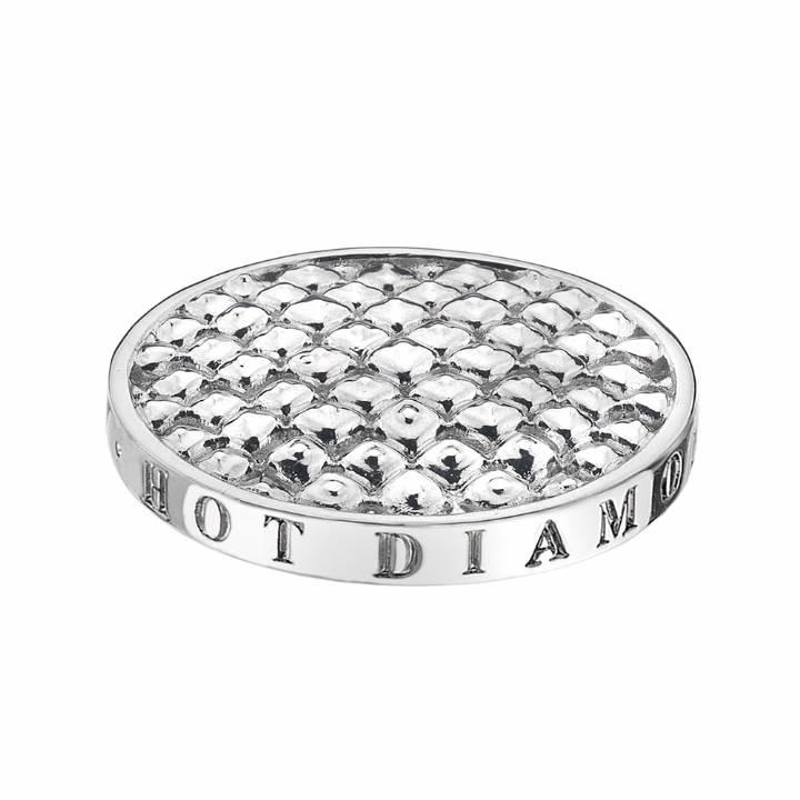 Emozioni Silver Sparkle Coin - 25mm  was £19.95 2223045
